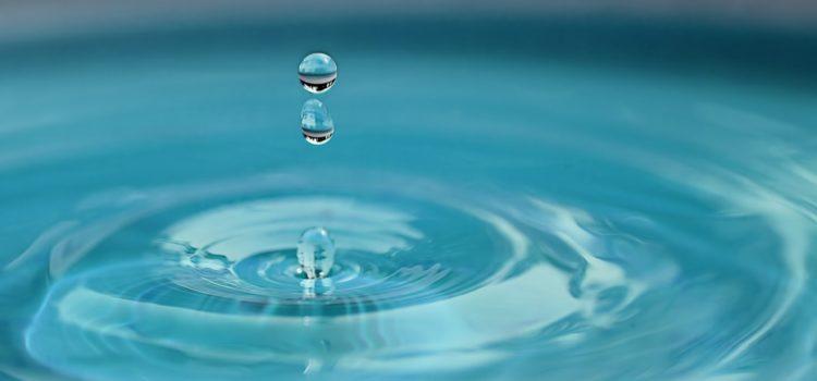 chloramine water filter