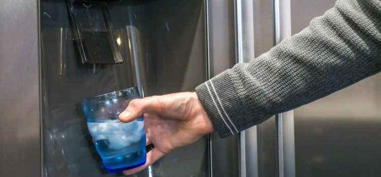 refrigerator water filters that remove fluoride