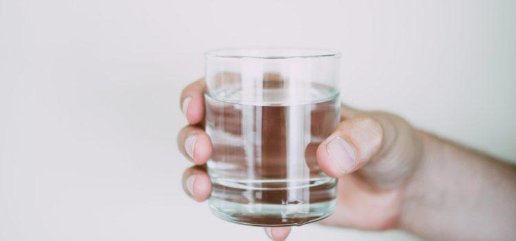 universal inline refrigerator water filter